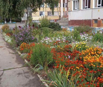 Осенняя уборка территории лицея 25сентября 2021 г.